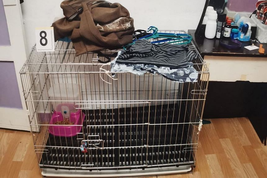 A silver rectangular metal cage that was allegedly used to confine the five-year-old boy. His parents are being tried for murder by common intention for inflicting severe scald injuries on him.