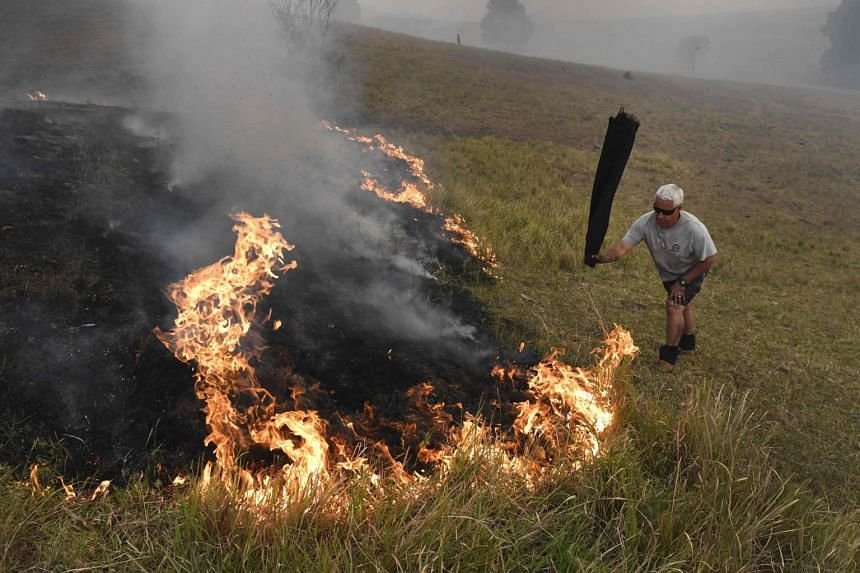 A man uses a wet towel to help put out flames as they encroach on farmland near the town of Taree on Nov 14, 2019.