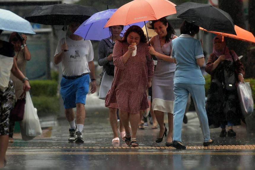 Singapore can expect short thundery showers in the afternoon on seven to nine days as the north-east monsoon season hits over the next two weeks.