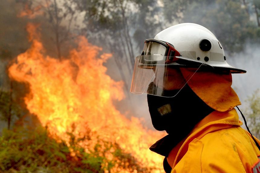 A firefighter stands as the fire rises along Putty Road in Colo Heights in Sydney on Nov 16, 2019.