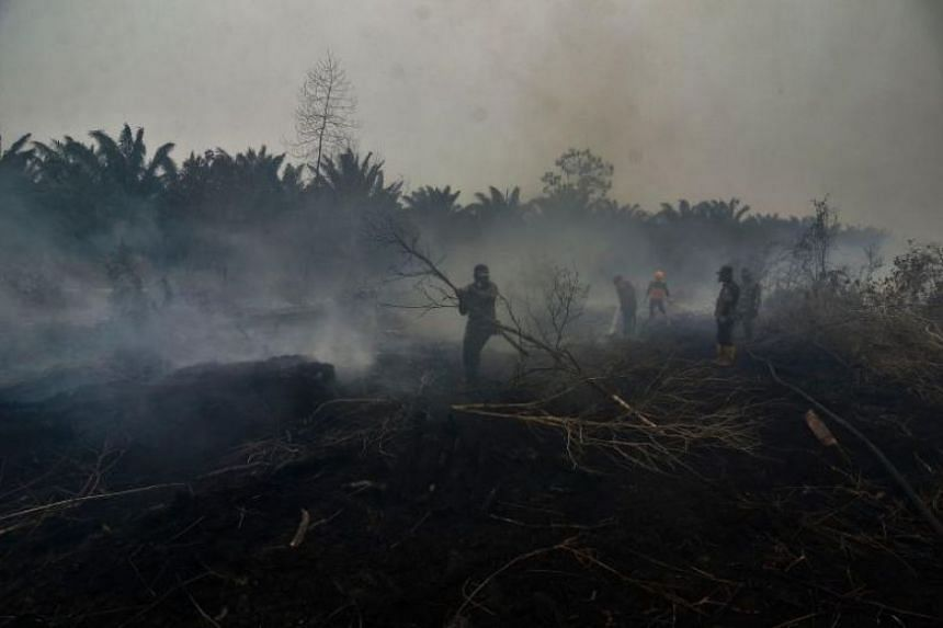 A photo taken on Sept 23 shows Indonesian firefighters battling a forest fire in Kampar, Riau province.