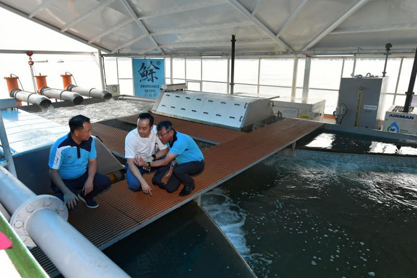 (From left) Aquaculture Centre of Excellence chairman Ong Beng Ann, Senior Minister of State for Trade and Industry  Koh Poh Koon and Aquaculture Centre of Excellence CEO Leow Ban Tat at the Eco-Ark floating closed-containment fish farm on Nov 19, 20