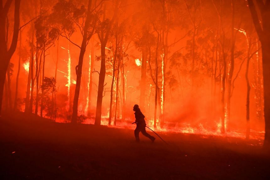 A Fire and Rescue officer is seen by a fire near Colo Heights Public School, south-west of Sydney, Australia, on Nov 19, 2019.