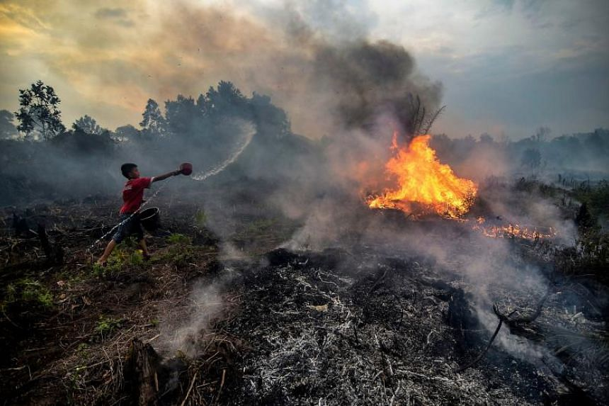 In a photo taken on Oct 4, 2019, a young boy tries to extinguish a fire at a peatland area near his neighbourhood in Pekanbaru, Indonesia.