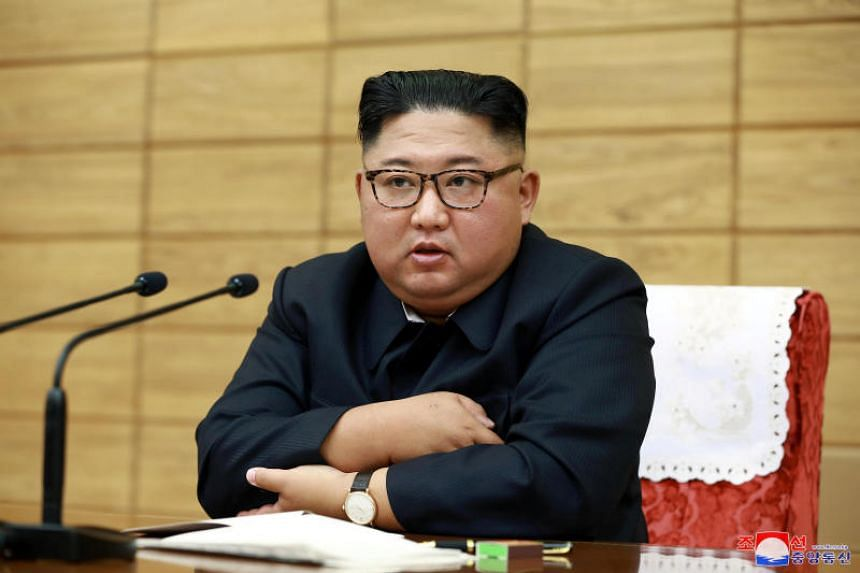 North Korean leader Kim Jong Un's uncle Kim Pyong Il has returned to North Korea.