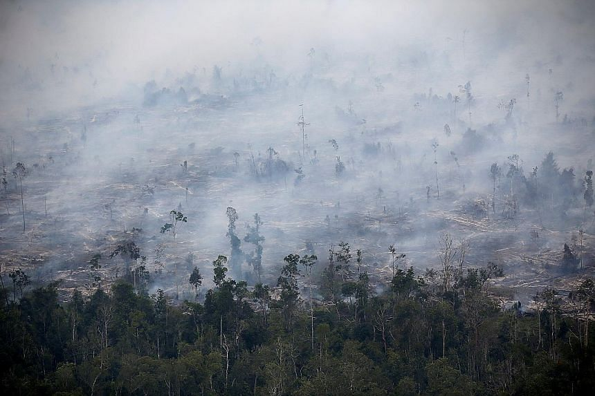 Smoke covering a forest in Central Kalimantan on Sept 30. The Indonesian fires have been blamed for increasing greenhouse gas emissions and deforestation. This year's fires were the worst since 2015, when 2.6 million ha of land was burned.