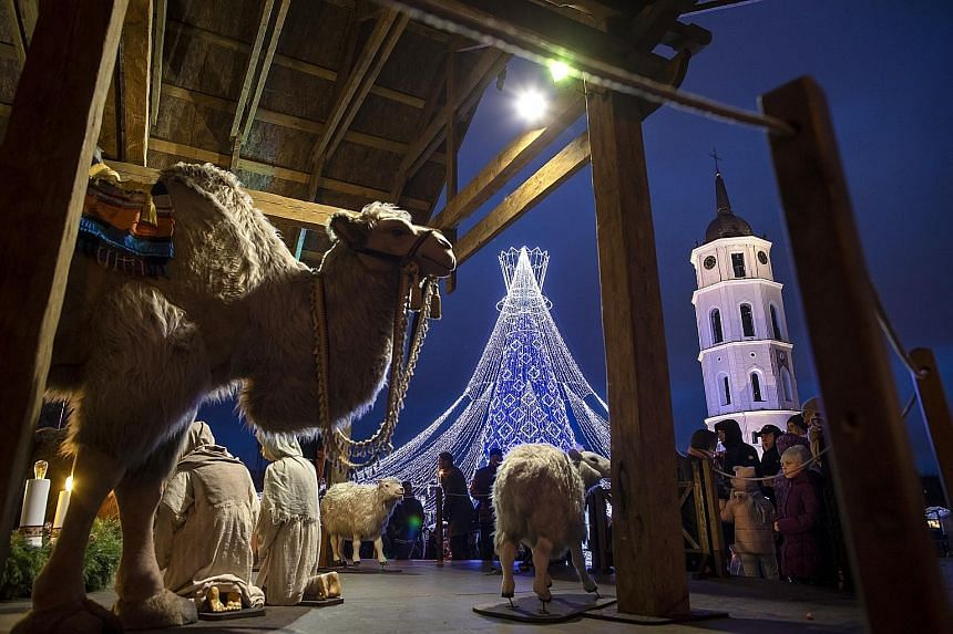 A camel, sheep and a lighted Christmas tree in the background feature in this nativity scene in Cathedral Square, Vilnius, Lithuania.