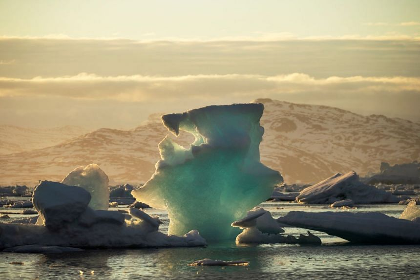 The UN weather agency also said that 2019 is expected to be the second or third-warmest year on record.