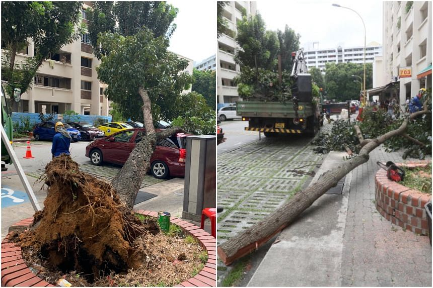 The incident in Hougang took place around 10.50am on Tuesday at Block 703 Hougang Avenue 2.