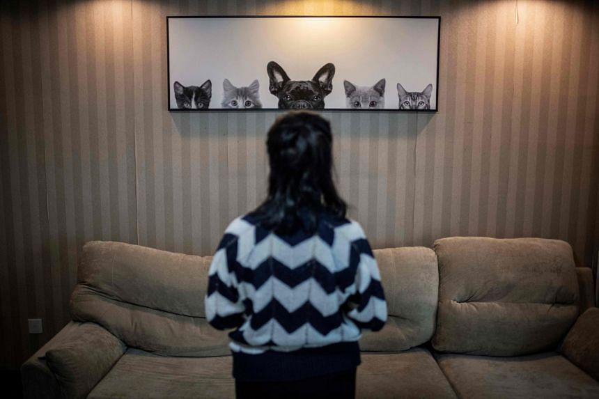 A photo taken on Oct 23, 2019, shows Xiaogunzhu posing for a photo in an apartment hotel in Beijing.