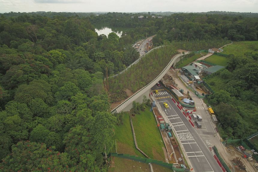 The 140m-long bridge is aimed at reducing the number of roadkill incidents in the Mandai Precinct.