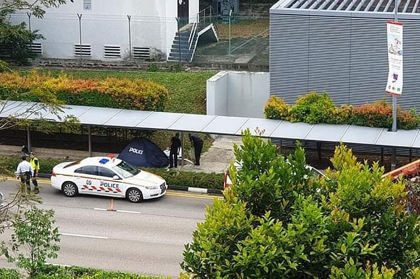 Lianhe Wanbao reported that the driver allegedly lost control of the car, resulting in the vehicle crashing into the covered walkway. A 24-year-old man has been arrested for causing death by dangerous driving.