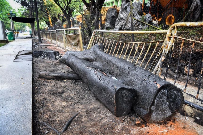 A burnt tree trunk lies beside the railings which were also damaged due to the fire at 48 Tuas Crescent.