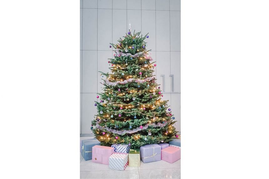 7. Add colour to the christmas tree