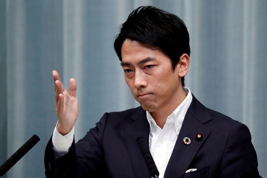 Japan's Environment Minister Shinjiro told foreign media progress has been slow partly because of the gulf between how Japan and the world see energy and environment issues.