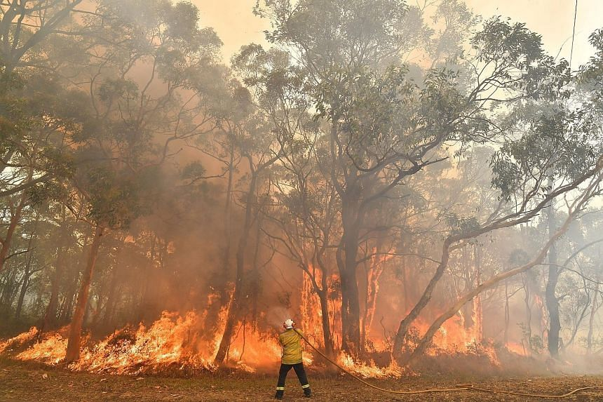 Catastrophic conditions as bushfires intensify in Australia