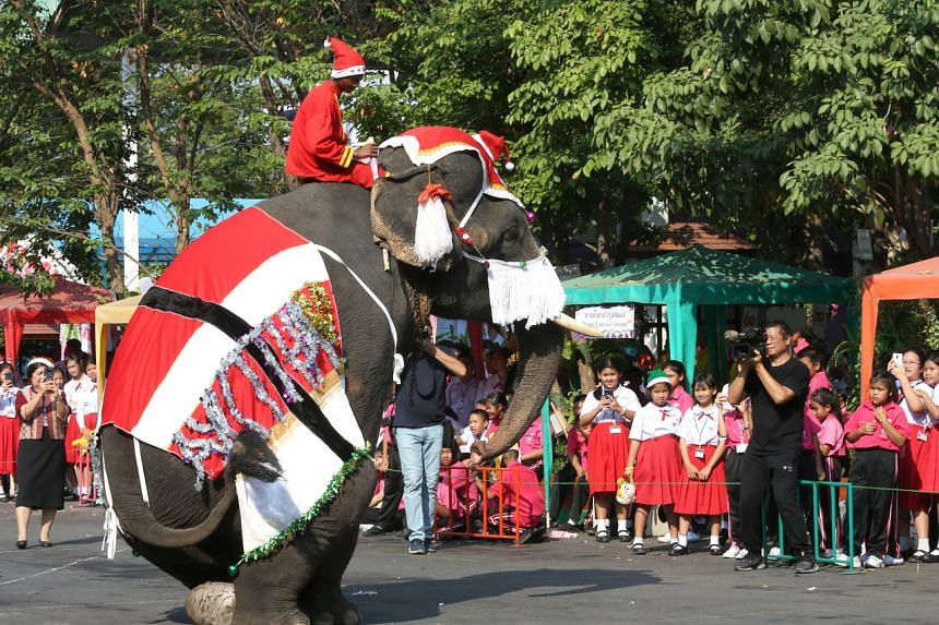 An elephant and his Mahout dressed as Santa Claus perform after distributing presents to pupils during Christmas celebrations at a school in Thailand on Dec 23, 2019.