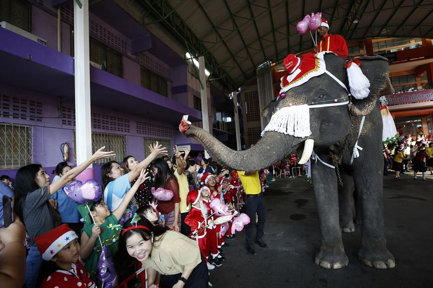 An elephant dressed as Santa Claus helps distribute presents to students during Christmas celebrations at a school in Thailand on Dec 23, 2019.