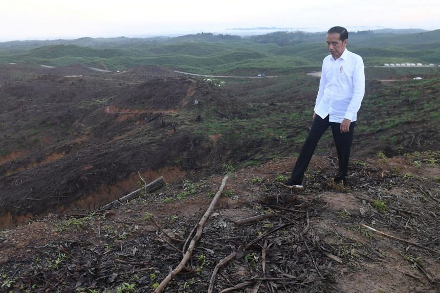 Indonesian President Joko Widodo inspects an area planned to be the location of Indonesia's new capital in East Kalimantan province on Dec 17, 2019.