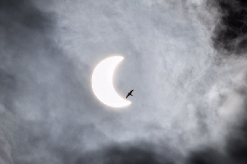 A bird flies past the annular solar eclipse, as seen from Harbourfront Tower on Dec 26, 2019.