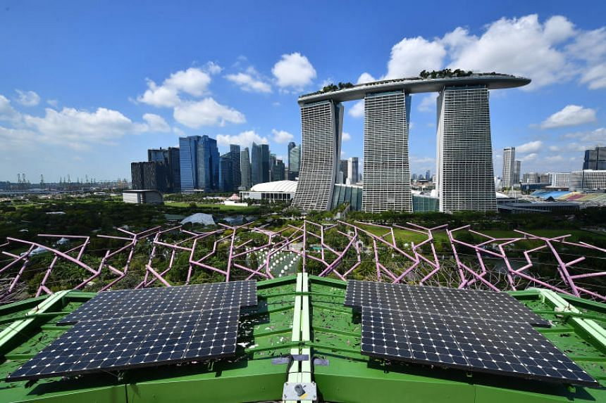 View from the open-air rooftop deck, which is the highest point at 50m above ground.