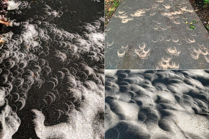 A few onlookers posted pictures of many strange crescent-shaped light patterns they noticed on the ground during the annular solar eclipse on Dec 26, 2019.