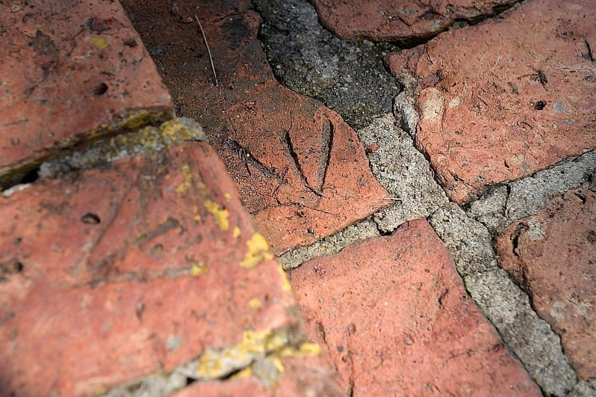 As a sign of defiance, the POWs imprinted arrows on the bricks to indicate that they were detained by the authorities. Six former POWs visited the botanic gardens in 1995 to observe their work.