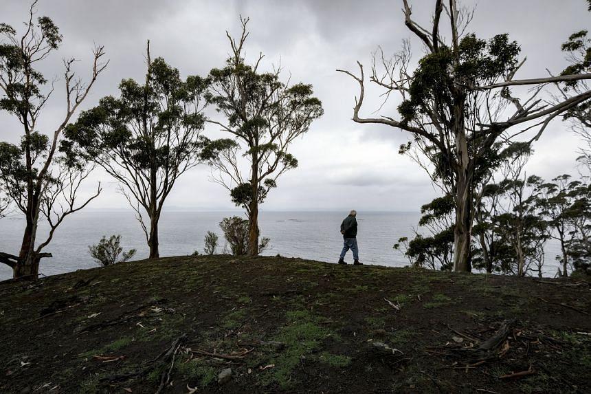 Mr Rodney Dillon walking along the coastline on indigenous land in Bruny Island, Tasmania.