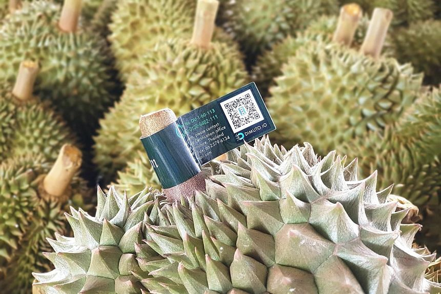 Mr Gary Loh, the founder of Singapore-based blockchain start-up DiMuto. Set up last year, it has helped to tag 30 million fruits globally, worth US$100 million (S$135 million). Each fruit has a QR code that links to information such as the fruit's or