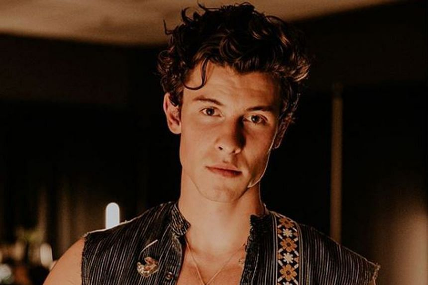 Most Handsome Face: Shawn Mendes (above).
