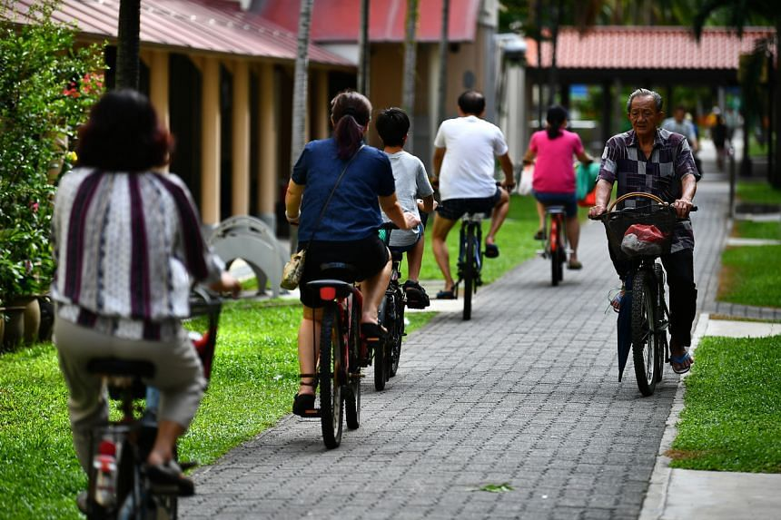 Cyclists on the cycling path in Tampines.
