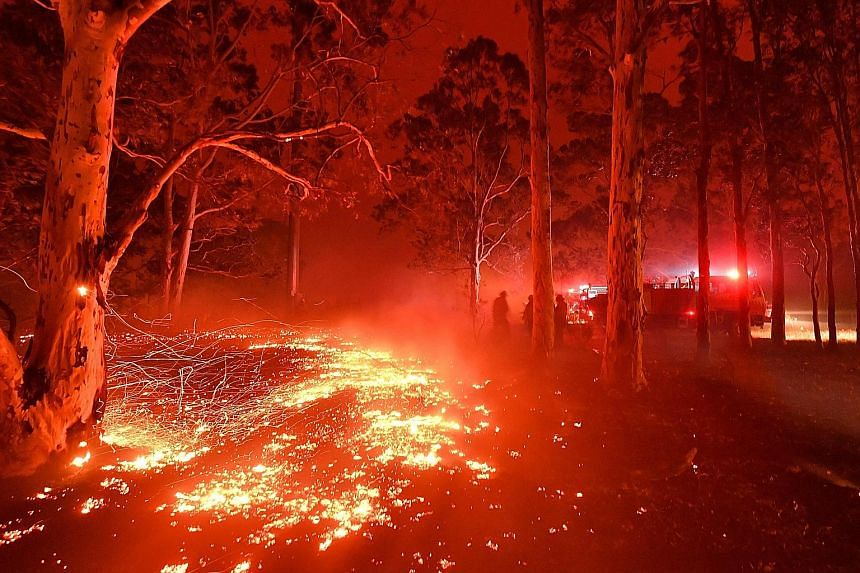 Firefighters battling bush fires around the town of Nowra in New South Wales yesterday.