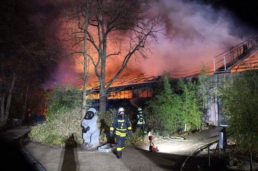 The burning monkey house at Krefeld Zoo in Germnay on Jan 1, 2020.