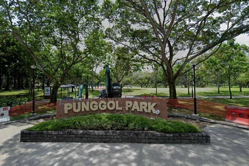 "A Telegram user had posted in Telegram chat groups calling for personal mobility device users to gather at Punggol Park at 9pm on Dec 31 to ""cause injury to anyone they see""."