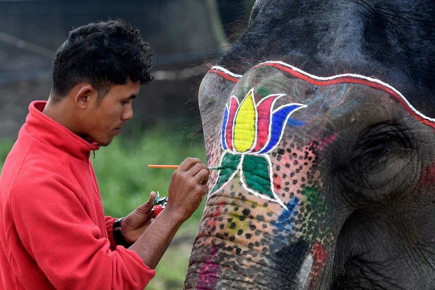 A mahout decorates his elephant before an elephant beauty pageant in Sauraha Chitwan on Jan 2, 2020.