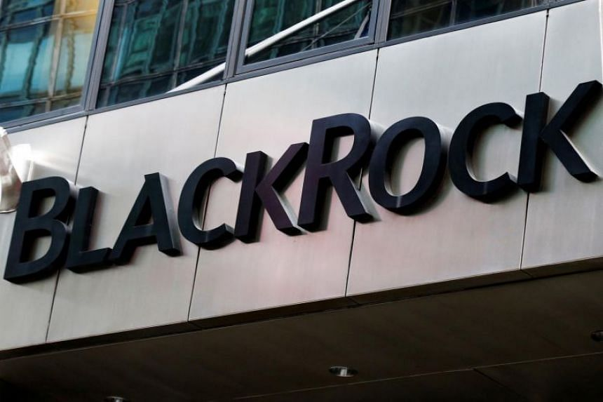 BlackRock offers a range of investment products and services to institutional clients like banks as well as average investors among the public.