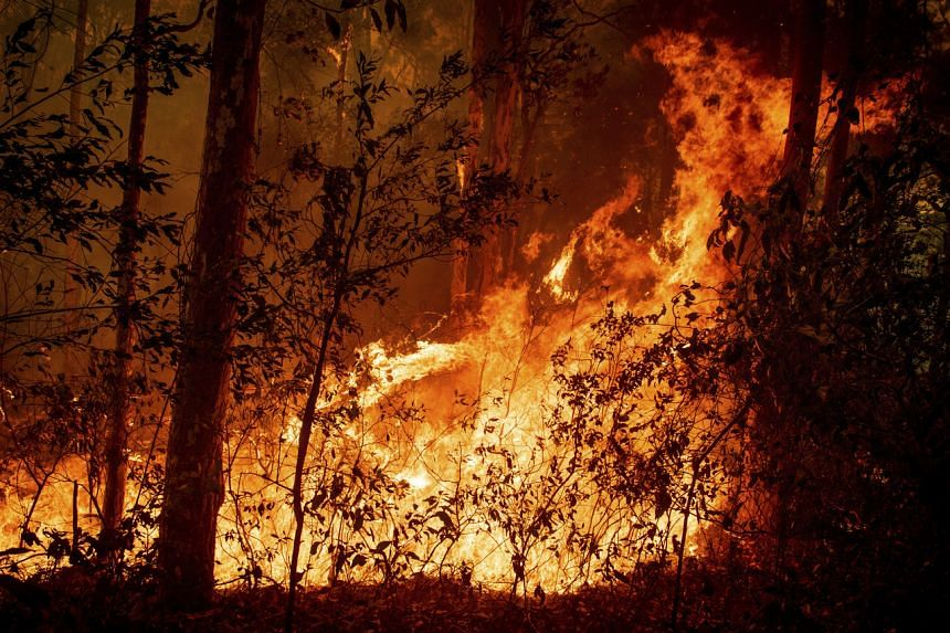 Nearly 150 fires were still burning in New South Wales, and dozens more were burning in Victoria.