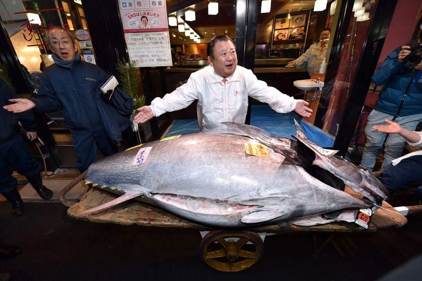Mr Kiyoshi Kimura, head of Kiyomura Corp, poses with the 276kg fish at a Sushizanmai restaurant in Tokyo on Jan 5. Kiyomura made the winning bid for the second year in a row.
