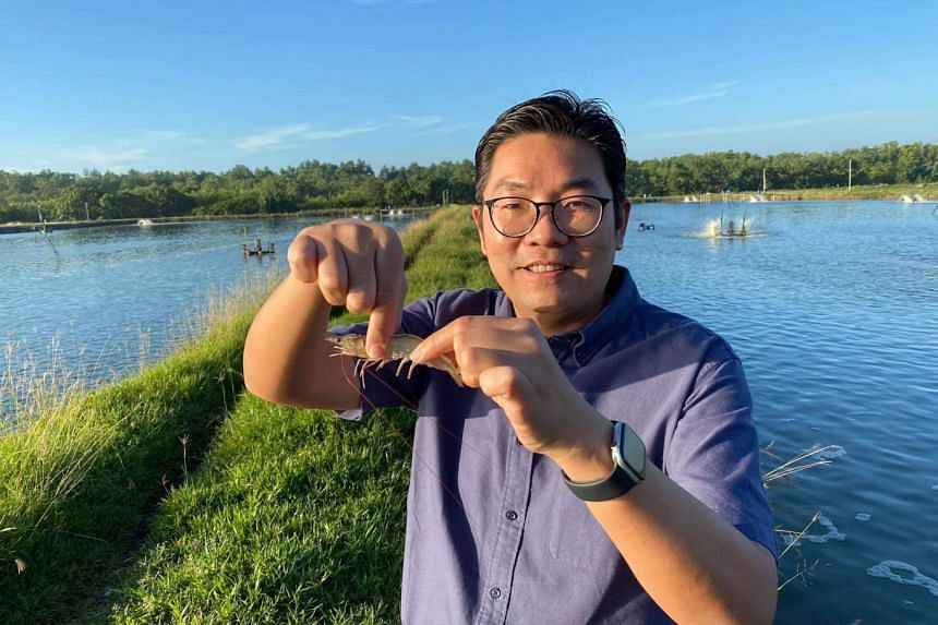 Malaysia's Deputy Agriculture and Agro-based Industries Minister Sim Tze Tzin holding up a prawn during a visit to a shrimp farm, on Jan 5, 2020.