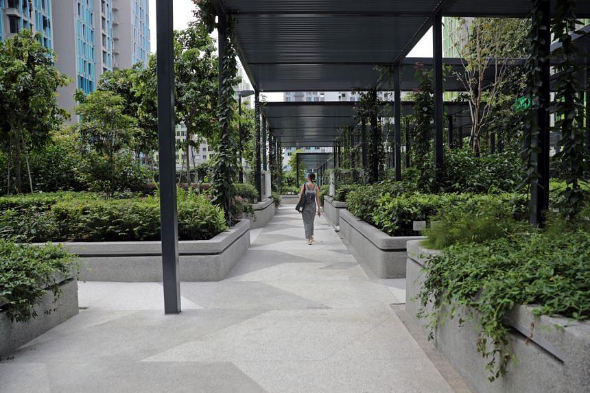The rooftop garden on the fourth floor above the multi-storey carpark at Alkaff Vista at the new Bidadari estate.