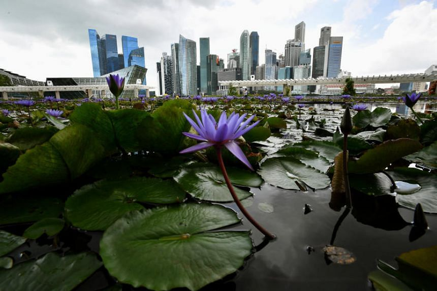Singapore's political stability, high education standards, green spaces, low crime and efficient infrastructure make it appealing for those considering a change of scenery.