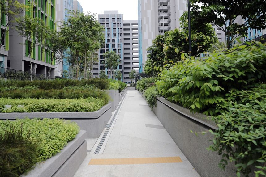 Alkaff Lakeview: There are wide paths and ramps for wheelchair access in the garden to promote ageing in place.