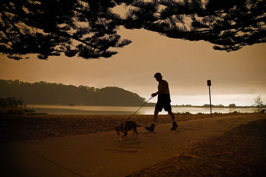 A man walking a dog as smoke haze from bushfires hugs the sky in Narooma, New South Wales, on Jan 5, 2020.