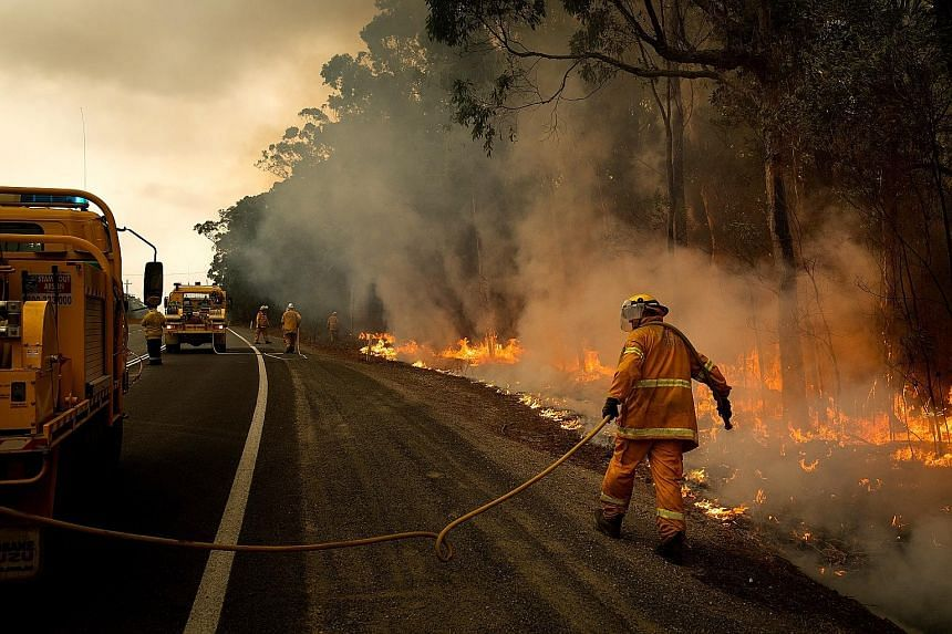 Volunteer firefighters tending to a controlled burn along Princess Highway in Australia's Meroo National Park on the New South Wales South Coast on Sunday to create a fire break. Recent rain has hampered efforts to complete such strategic burns as mo