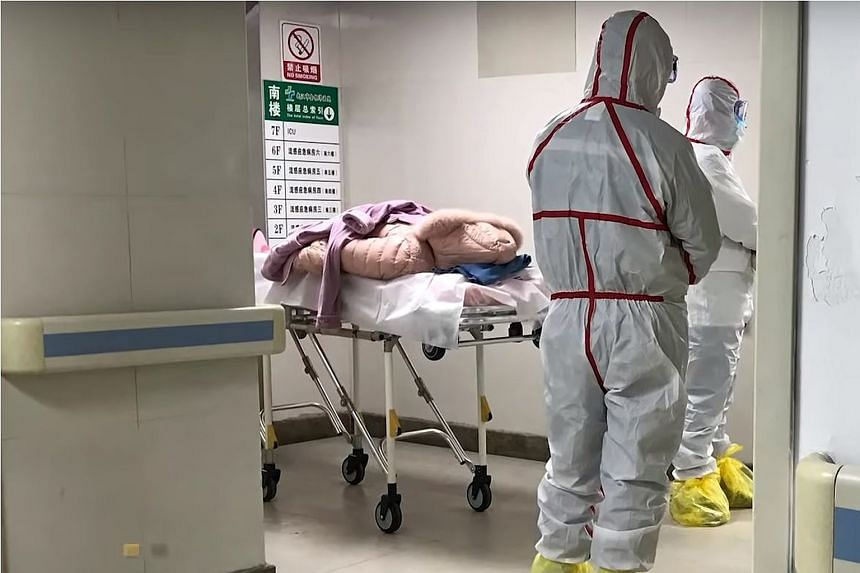 Medical staff in protective gear at the Wuhan Medical Treatment Centre in China's Hubei province. Many of the patients are sellers from a local seafood wholesale market. All those affected had fallen ill between Dec 12 and 29.