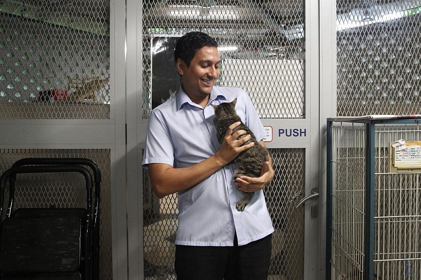 Dr Jaipal Singh Gill, executive director of the Society for the Prevention of Cruelty to Animals (SPCA), with one of the cats at the SPCA. Dr Gill said the state of animal welfare in Singapore has improved over the years.
