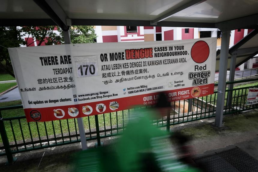 Singapore had its third-biggest dengue outbreak in 2019, with more than 16,100 people down with the viral infection.