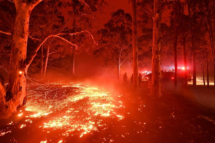 Burning embers cover the ground as firefighters battle against bushfires around the town of Nowra in the Australian state of New South Wales, on Dec 31, 2019.