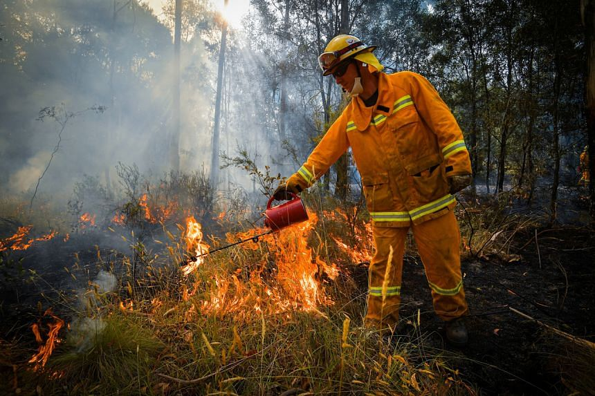 Country Fire Authority strike teams performing controlled burning in Australia on Jan 7, 2020.
