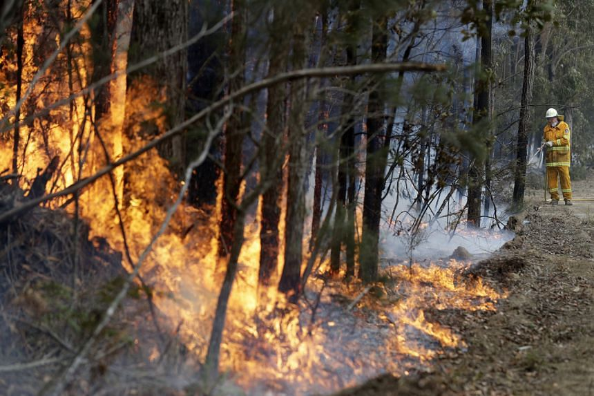 A firefighter manages a controlled burn in Australia on Jan 8, 2020.